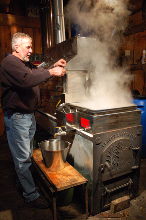 evaporating: The Evaporating Process in the Making of Maple Syrup