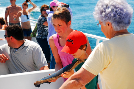sightseers: A Family on a Whale Watch Cruise Examine Baleen from a Humpback Whale