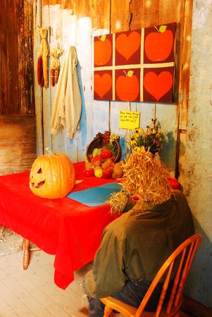 decor: Halloween Decor