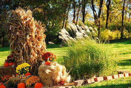 decor: Autumn Decor Stock Photo