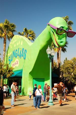 jacks: Dinosaur Jacks Sunglass Shack