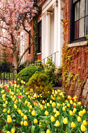 A garden in spring brings color to the Back Bay neighborhood of Boston