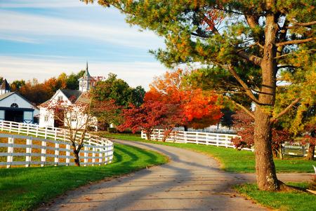 Manchester Farms near Lexington Kentucky Horse Country