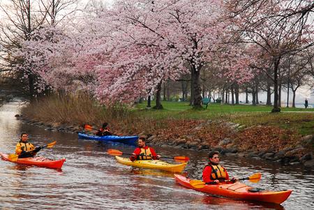 Kayakers Enjoying a Spring Day Editorial