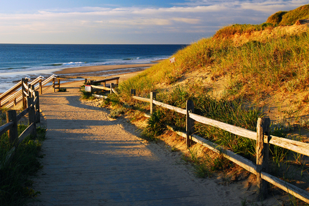 split rail: Early Morning, Cape Cod