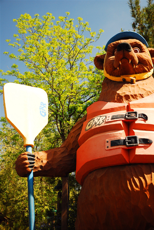 Big Bear, armed with a paddle, ready to take on the rapids in California