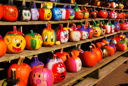 Painted Pumpkins Editorial