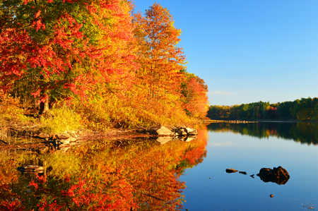 Autumn Calm In New England