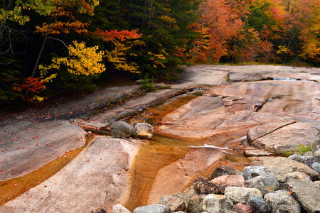 A small stream runs along brilliant fall foliage in New England