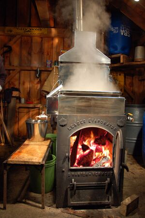 A natural wood flame fire heats the pure maple sap, the beginning process to make pure maple syrup Editorial