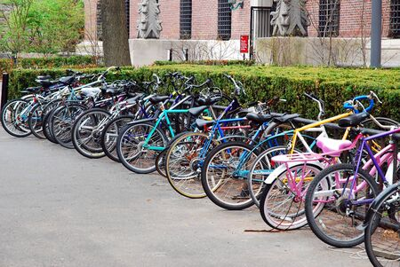 Bikes are tied up on the Harvard University Campus Editorial