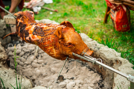 Photo of a suckling pig on spit in free photo