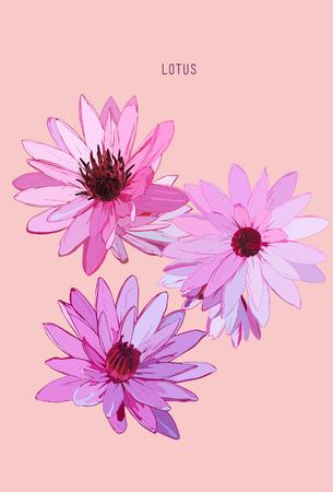 beautyful: Vector set of hand drawn lotus flowers Illustration