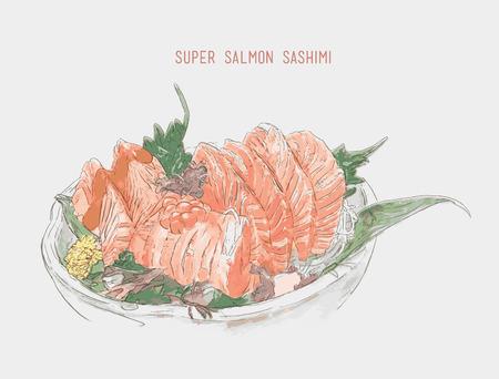 Salmon sashimi Sketch watercolor vector. Hand drawn illustration .