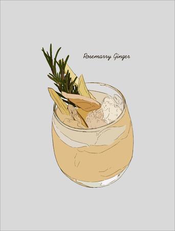 Ginger rosemarry martini cocktail, Hand drawn sketch line art vector. Illustration