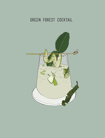 tonic: Green forest cocktail , sketch vector.. cucumber ,kaffar lime, mint , spice and herb mojito cocktail.