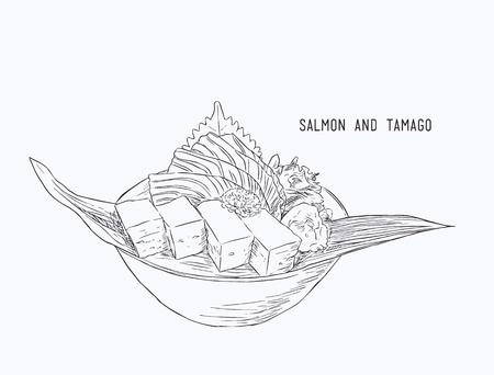 Fresh salmon food vector. Illustration