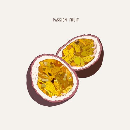 Passie fruit, passie snij. Vector hand getekende illustratie