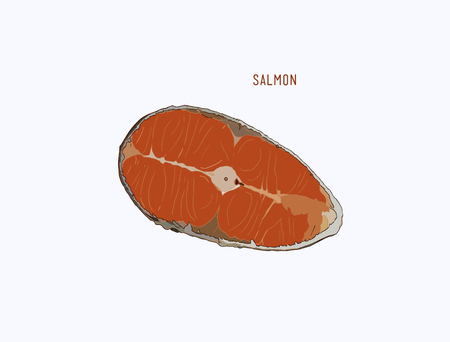 salmon fillet: raw salmon sliced , hand draw sketch vector.
