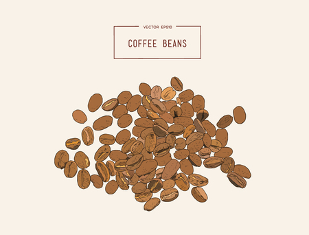 Hand drawn coffee beans set. Vector illustration.