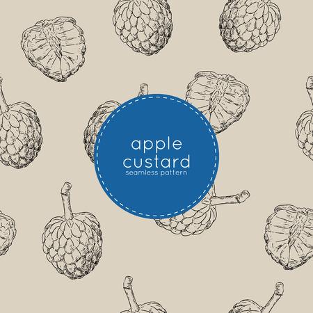 Vector seamless pattern with cherimoya fruit , custard apple or sugar apple sketch vector.