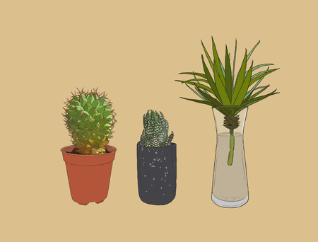 Hand drawn houseplant . cactuses and succulents in pots. sketch vector.