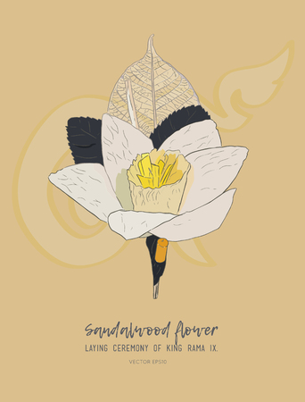 Thai Artificial Funeral Daffodil Flower or Dok mai chan, hand draw sketch vector illustration. Sandalwood flower-laying ceremony  for mourn to king of thailand pass away.