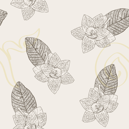 Thai Artificial Funeral Daffodil Flower or Dok Mai chan, outline hand draw sketch vector. Sandalwood flower-laying ceremony for mourn to king of thailand pass away. Illustration