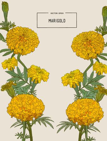 オレンジ色のマリーゴールドと装飾的な背景、メキシコ死者の日の休日のシンボル。ベクトルの図。