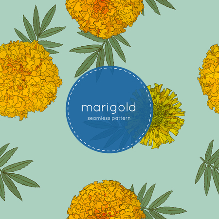 Vector seamless pattern of Mexican holiday Day of the Dead. The illustration with traditional marigold flowers.