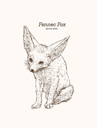 Hand drawn vintage style sketch of cute funny Fennec Fox. Vector Illustration