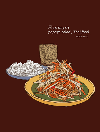 A papaya salad or som-tum , thai food with rice noodle and sticky rice hand drawn sketch vector.