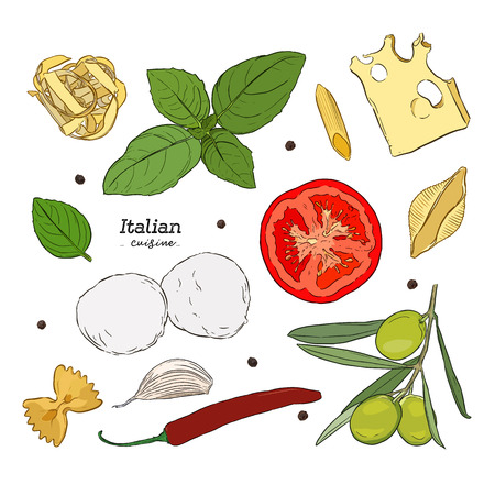 Set with hand drawn illustrations of food. Italian cuisine. Ingregient of italian cuisine, cheese, pasta olive, basil, pepper, garlic, chili. vector illustration in vintage style