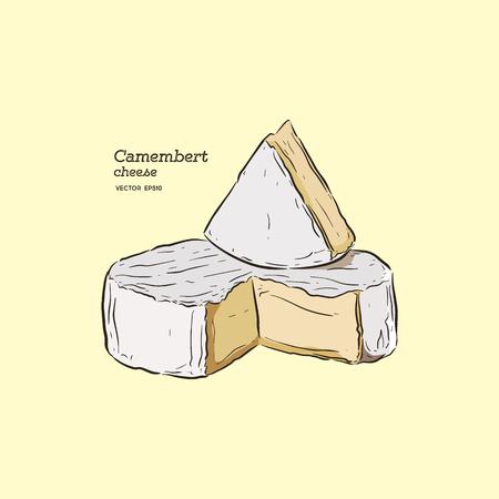 fromage camembert, vecteur de croquis de dessin à la main.