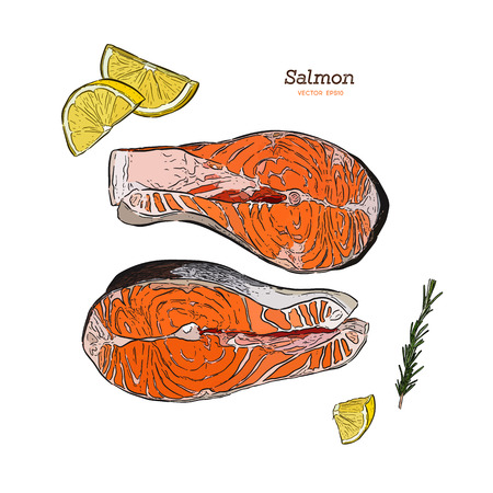 vector salmon steak hand drawn illustration. rosemary, lemon, fish elements