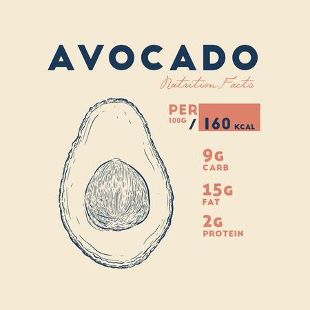 Health benefits of Avocado. Nutrition facts. Hand drawn health benefits vector.