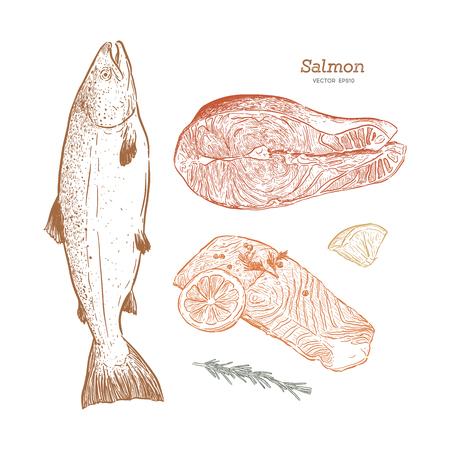 Croquis dessinés à la main illustration vintage de vecteur de fruits de mer Vecteurs