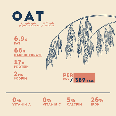 Health benefits of Oats . Nutrition facts. Hand drawn health benefits vector.