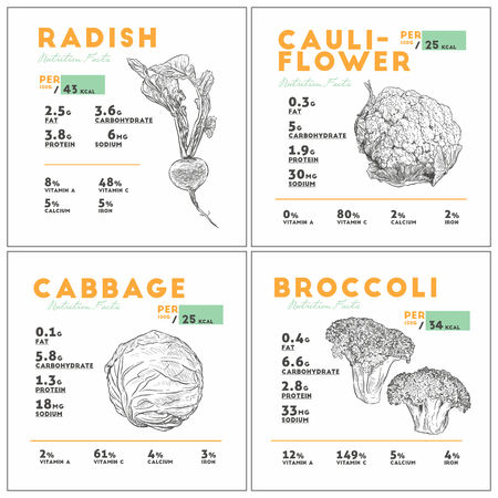 Set of vegetable, radish, cauliflower, cabbage and broccoli, health benefits. Vector illustration with useful nutritional facts. Essential vitamins and minerals in healthy food. Medical, healthcare and dietory concept.