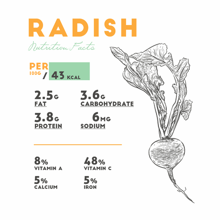 Set of radish, health benefits. Vector illustration with useful nutritional facts. Essential vitamins and minerals in healthy food. Medical, healthcare and dietory concept.