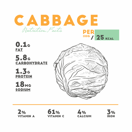 Cabbage health benefits. Vector illustration with useful nutritional facts. Essential vitamins and minerals in healthy food. Medical, healthcare and dietory concept.
