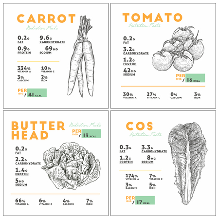 Nutrition facts of vegetable set. carrot, cos, tomato and butterhead. Hand draw sketch vector set Illustration