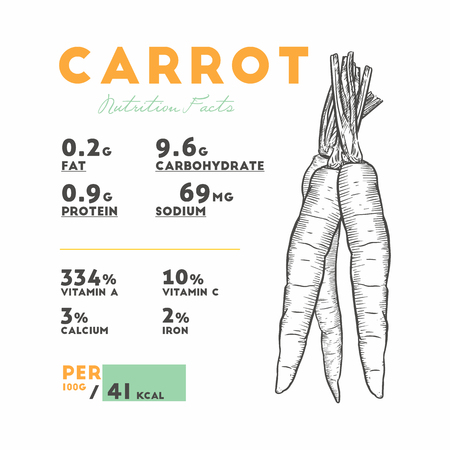 Nutrition facts of raw carrot. Hand draw sketch vector. Illustration
