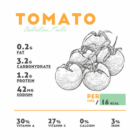 Nutrition facts of raw tomato. Hand draw sketch vector.