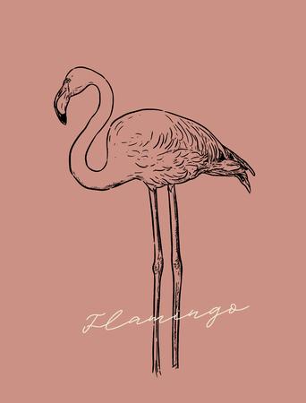 Flamingo2-line.jpg