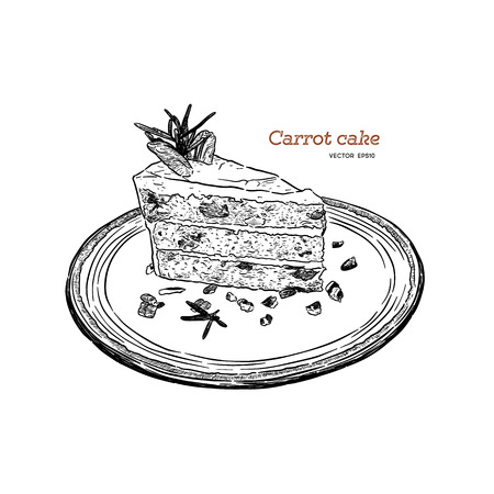 carrot cake with walnuts, prunes and dried apricots hand draw sketch vector.
