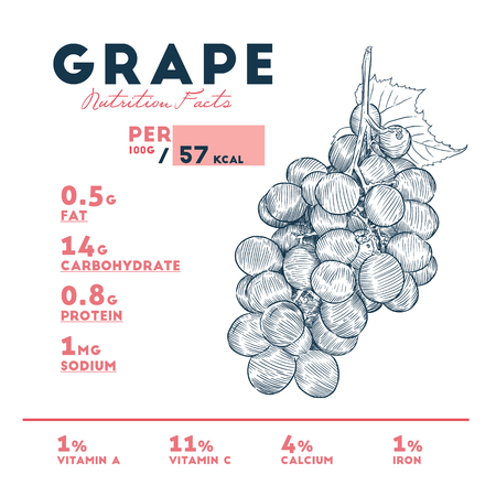 Nutrition facts of grape, hand draw sketch vector. Infographic 向量圖像