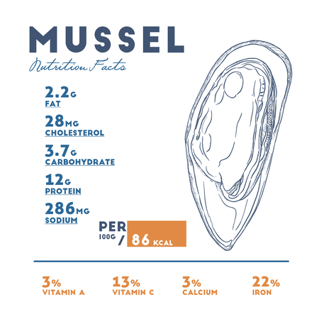 Nutrition facts of mussel, hand draw sketch vector. Infographic