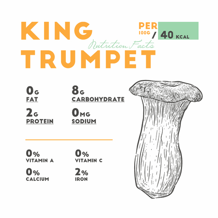 king trumpet mushroom, hand draw sketch vector. Nutrition facts. Stock Illustratie