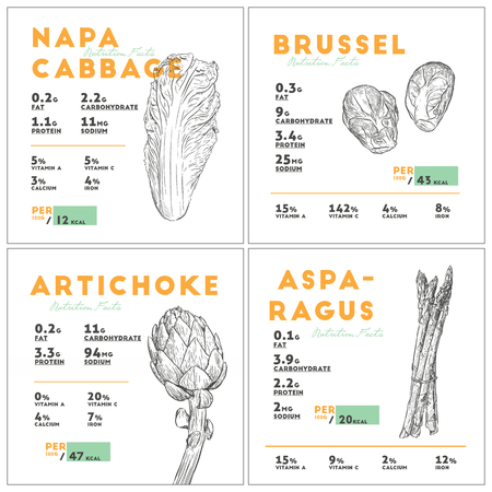 Set of vegetables nutition facts, napa cabbage, brussel spout, artichoke and asparagus. hand draw sketch vector. Illustration